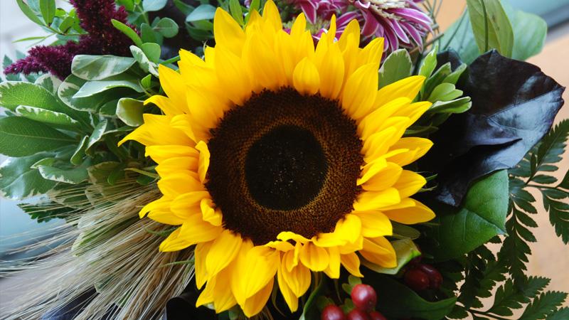 Blumen Peters - Blumenstrauß Manufaktur